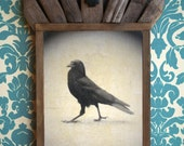 Crow Raven Wings. Bird. Antique. Original Encaustic Beeswax Mixed Media Art. Wall Art. Wall Decor. Wall Hanging. STRUT by Mikel Robinson