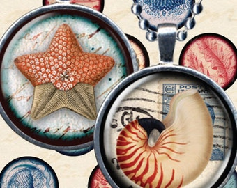Seashell Beach digital download vintage collage sheet in 1 inch / 25mm circles for bottlecaps, pendants, glass tiles, and more piddix 886