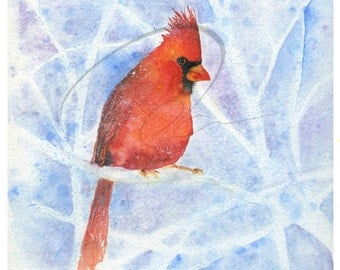 Cardinal Rule - Cardinal Bird, Red Bird, Winter Theme, Watercolor Painting, Available in Paper and Canvas by Olga Cuttell