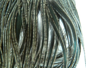 """6 Natural Black BADGER Variant, THICK TAPERED Hair Feather Extensions, 5"""" to 7"""" Long Iridescent"""