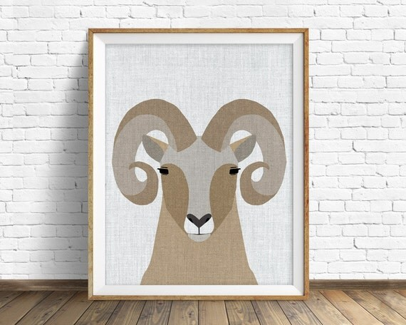 Bighorn Sheep - art print, large art, mid century modern wall art, art for kids, nursery decor, nursery wall art, kids room art, animal art
