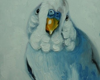 Bird painting 240 parakeet 12x12 inch portrait original oil painting by Roz