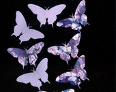 NEW YEAR SALE Paper Butterflies - Pb025-D13, scrapbooking, card making, floral, bedrooms, gifts