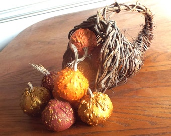 Gourds Fall Autumn Decor 10 Small Painted Textural Natural Elegant Lasts Years Burgundy Orange Gold Textural Fall Basket Filler Decorating