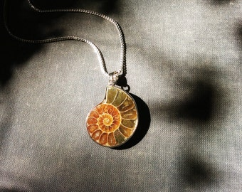 Ammonite Fossil Jewelry, natural golden ochre color fossil wrapped in sterling silver, boho jewelry.