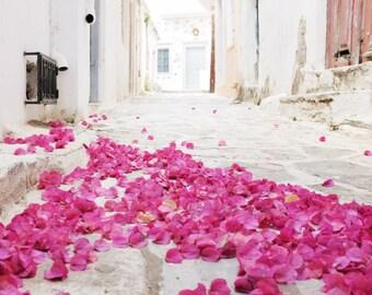 Greece bougainvillea flowers art print large wall art pink magenta white fine art photography 'Flower Carpet'