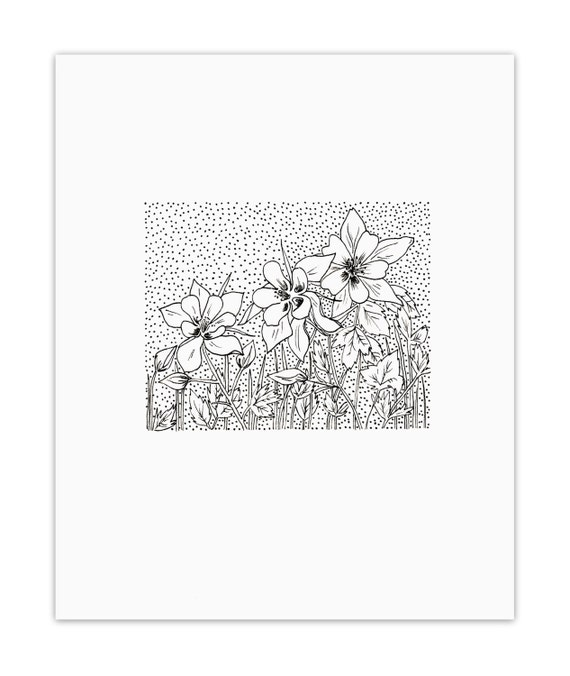 rocky mountain columbine coloring pages - photo#17