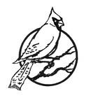 CardinalCuriosities