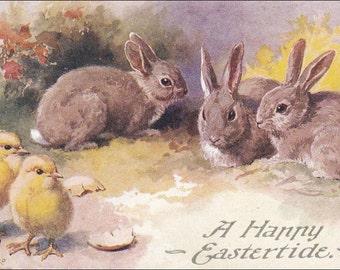 Vintage Easter Post Card,  Brown Easter Bunny Rabbits watch Chicks postcard, Easter vintage postcard, Easter postcard, Salmon, Sevenoaks