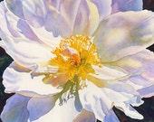 """Four floral prints measuring 6"""" x 8"""""""