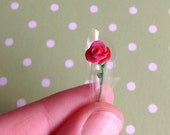 Im Your Greasy Lover Miniature Rose