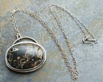 Turritella Agate Sterling Silver Necklace