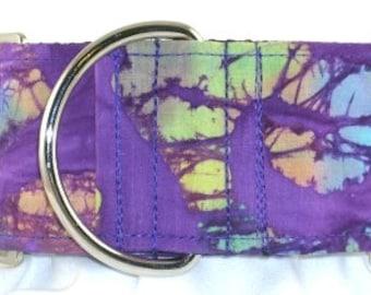 2 inch purple greyhound martingale dog collar, paint, colorful, tie dye, violet, swirls, finger painting, retro, funky--Artist Splatter