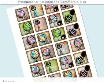 Feathers Digital Collage Sheet 1x1 Inch Squares and 1.5 Inch Squares for Glass Resin Pendants Charms JPG Q0052 S0052 1 Inch