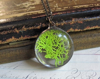 Moss Jewelry Glass Bubble Necklace