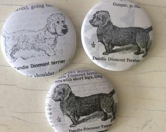 Dandie Dinmont Terrier Vintage Dictionary Illustration Magnet Set of 3