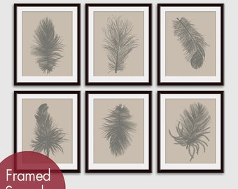 Feathers (Series A26) Set of 6 - Art Prints (Featured in Gravel on Soft Truffle ) Feather Wall Art