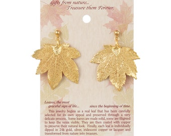 Real Full Moon Maple Leaf 24k Gold Post Dangle Earrings - Real Dipped Leaves - On Card