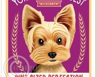 "8x10 Yorkie Art - ""Yorkie Knows Best Microbrew"" - Yorkshire Terrier Art print by Krista Brooks"