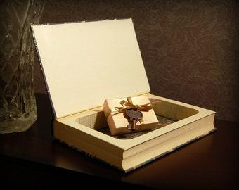Hollow Books Safe (Les Misérables, Vol. 2)