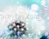 Dandelion Print, Blue, White, Flower Photography, Baby Neutral, Nursery Decor, Dandeion Art, Pastel Decor