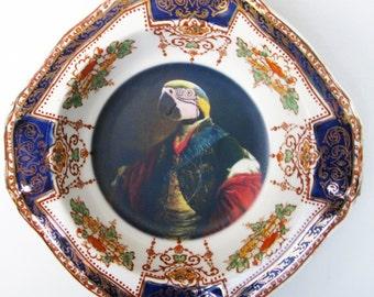 """Portrait Bowl.   Earl of Psittacoidea Portrait  6"""""""