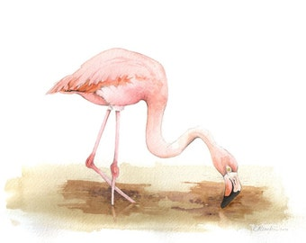 "Flamingo - Original 8"" x 10"" Bird Watercolor Painting - Florida Bird Wall Art - Bird Watcher Gift - Nature Art"