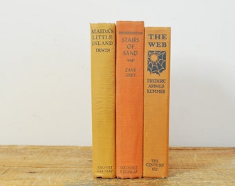 Vintage Book Display Lot of 3 Shades of Orange Fiction Literature Books Fall Colors