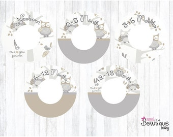Levtex Baby Night Owl closet dividers