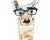 Llama Watercolour PRINT - Fake Nose Glasses, Animal Painting, Llama illustration, 8x10 Print