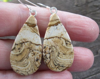 Picture Jasper Earrings