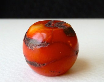 Large Red Coral Bead  - 20x22mm - Dyed Color