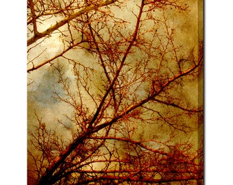Wall Canvas - Large Canvas - Gothic Tree Canvas - Winter Canvas - Abstract Canvas - Home Decor - Red Gold Canvas - Ethereal - 24 x 30 Canvas