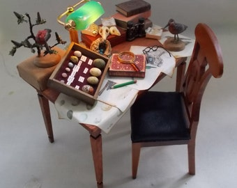 Dollhouse Miniature Filled handmade Ornithology Table with matching Chair