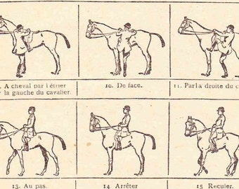 Beautiful Antique Print Encylopedia Page 1920s Engraved iIlustrations Equestrian riding horse tack paper projects scrapbooking, collage