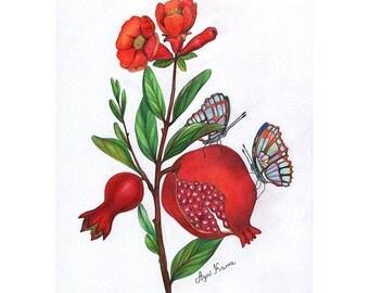 Pomegranate with two butterflies. Art by Oleksandra Petrovska.