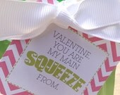 Printable Valentine's Go Go Squeeze Tag  - Valentine, you are my main squeeze - Valentine's Day Gift Tag for school - GoGo Squeeze Tag