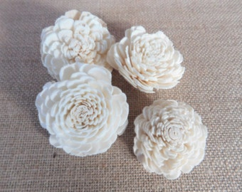 Sola flowers --  Cosmo Style  -- SET of 12