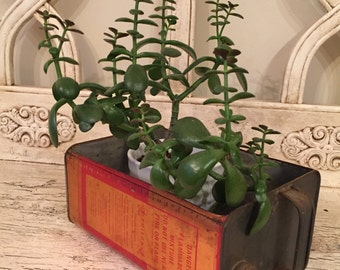 Industrial Planter - Upcycled Metal Bin for Storage or Plants - Urban Decor