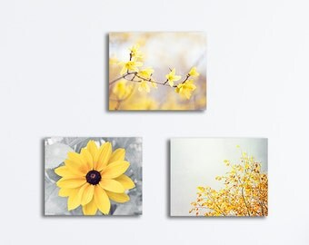 Yellow Grey Canvas Set, Yellow Gray Nature Wall Art, Yellow Flower Photography Prints, Botanical Photo Decor, Yellow Floral Canvas Wraps