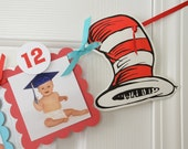 Dr Seuss 12 Month Photo Banner, First Year Photo Banner, First Year Banner,  Colors, 5 x 5 Scallops, Colors: Blue and Red c-1305