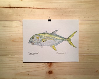 Jack Crevalle fly fishing artwork by Jonathan Marquardt of BadAxeDesign
