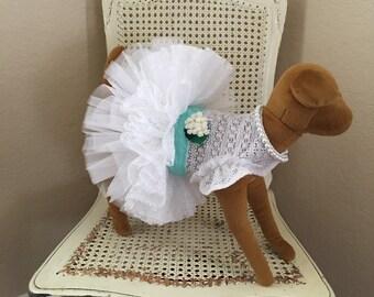 Southern Charm Dog Dress, Robins Egg