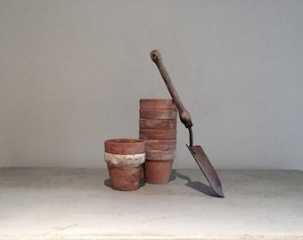 Set of Eight Terra Cotta Pots