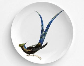 "Long-tailed Sylph, Bird Plate, Melamine Plate, Vintage Bird Illustration, decorative plate, Dinner Plate, 10"" plate, bird design"