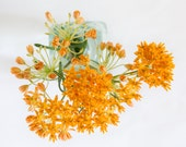 Orange Flower Botanical Print, Wildflower still life in aqua vase, graceful orange floral wall decor, Orange Butterfly Weed Print