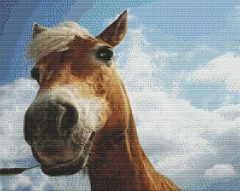 Silly Horse Close-Up Cross Stitch Pattern Animal Series Design Instant Download PdF