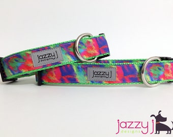 Color Explosion Dog Collar
