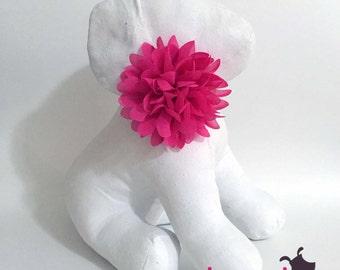 Hot Pink Chiffon Flower Collar Accessory