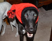 Greyhound knit cap/snood
